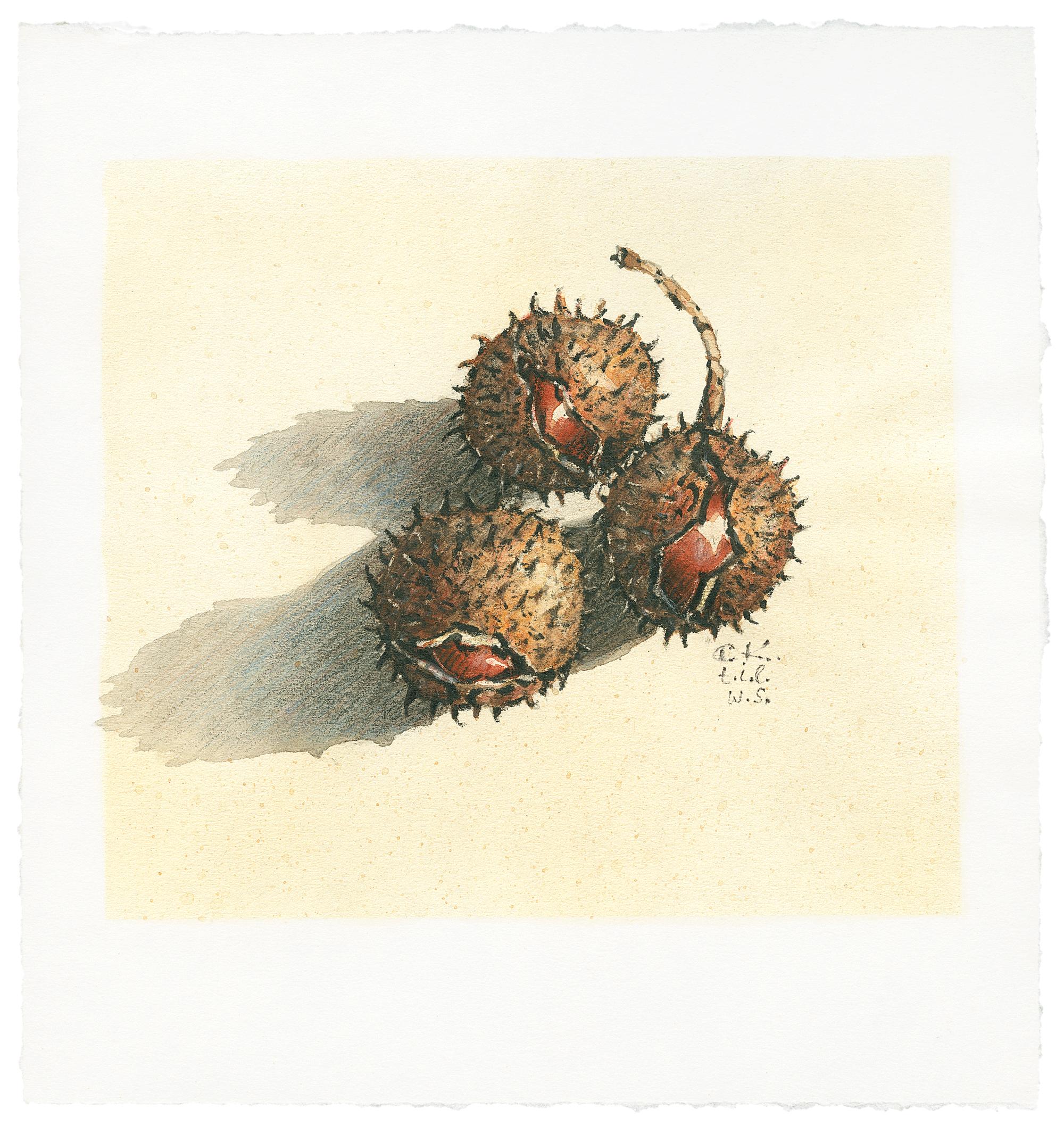 Zeichnung Christian Kreher ca 1987